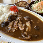 鳥取砂丘にいちばん近いドライブインレストラン砂丘会館 - とっとり115和牛カレー