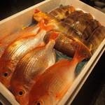 本日の鮮魚のカルパッチョ仕立て