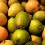ビルーチェ - 広島県より直送早摘みレモン