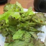 志高 - まずはサラダ、野菜のみのグリーンサラダにしてみました。