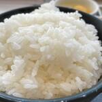 東京純豆腐 - ご飯大盛(2021.02)