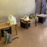 Cat Cafe てまりのおうち - かかし&もっぷも来ました