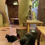 Cat Cafe てまりのおうち - かえで&メイ&きくらげ