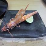 寿司 割烹 開 - 焼き物は車海老。カボスを少したらしていただきました。
