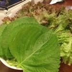 チョデ - えごまの葉っぱとサンチュ