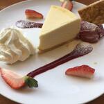 四八珈琲 - ニューヨークチーズケーキ