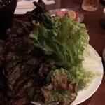 炭火焼肉 ゴン太 - サニーレタス