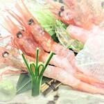 大漁旗 - 南蛮海老刺