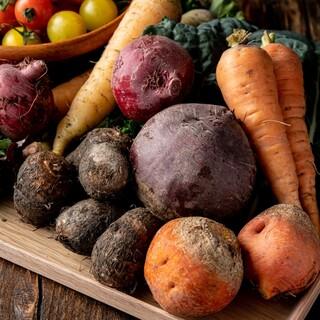 地元京都の契約農家の新鮮野菜