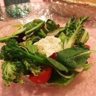 春野菜、イタリア産チーズ、季節ごとに変わるおすすめメニュー