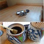 口福 - 蕎麦や口福(愛知県岡崎市)