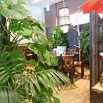 14720459 - 植物が多い店内