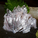 楽や - 神奈川 タチウオのお刺身