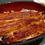 Hirokawa - 鰻アップ