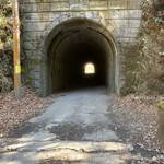 ポートおくたま - ここ(海沢隧道)、心霊スポットらしいです('21/03/10)