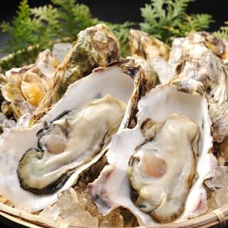 ★牡蠣食べ比べ