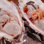 Ocean Grill noov -