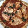JAY'S PIZZA - 料理写真:トマト香るトマトソースとチーズ、バジルが旨い!