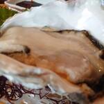 147743292 - 岩牡蠣