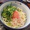 おどるうどん - 料理写真: