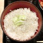 Akasakaajisai - 特製小箱弁当<限定15食> 1050円 のしらすご飯