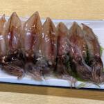 魚三酒場 - ホタルイカ刺し
