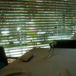 カノビアーノ アネックス - ☆窓辺のお席なので開放感がありますよ☆
