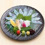 五十六屋 - 料理写真:■期間限定 食べる大分特集■佐伯市蒲江 甲イカ「甲イカのお造り」