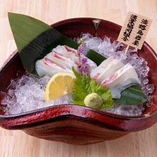 【淡路岩屋直送】天然鮮魚を気軽に楽しむ!