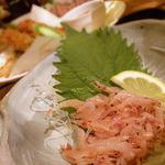 和民 - 桜海老のお刺身