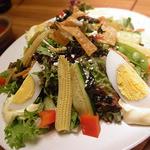 和民 - 北海道当麻で採れたトマトのドレッシングで食べる17品目の夏野菜サラダ