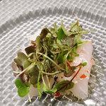 ビストロ ログシー - 鯛とヒラメのカルパッチョ