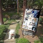 よもぎ屋 - September, 2012