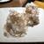マッシュルームトーキョー - サラダ