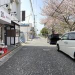 148660668 - 店前の公園の桜が満開です