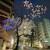 もつ焼き エンジン - その他写真:中野通りの桜