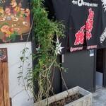 THE OKONOMIYAKI フラミンゴ -