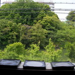 1492247 - 窓向きカウンターからの眺め 三保が池の桜が綺麗に見えます 今は新緑