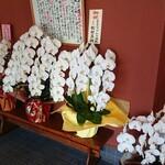 149291946 - 開店祝いのお花