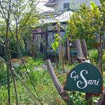 cafe Sari - 庭は花とハーブでいっぱい