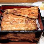 鰻のへそ - 愛知県産一色うなぎ1尾半