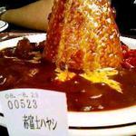 14960509 - 赤富士ハヤシ