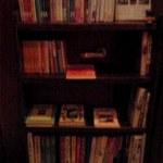 14977041 - 「ミセナカ書店」の本棚。特にオススメの旅本特集とのこと。2012.9