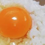 創作まぜそば まるさんかくしかく - 卵かけごはん税込180円
