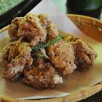 山の寺 邑居 - 2009年5月鶏の唐揚げ