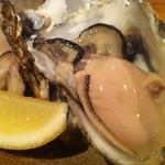 天晴 - 釧路仙鳳趾産生牡蠣