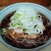 立ち食いそば はせ川 - 料理写真:かき揚げそば(390円)