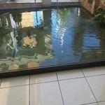 ヴェルデュール - 2012.9.28 池には、錦鯉