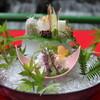 ひろや - 料理写真:鱧しゃぶコース お刺身