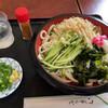 手打おぴっぴ - 料理写真:冷やしたぬきうどん930円
